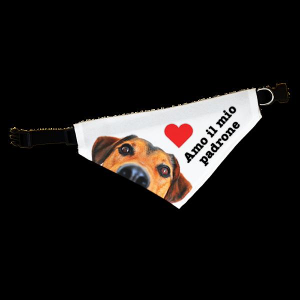 Collare bandana personalizzato per cane
