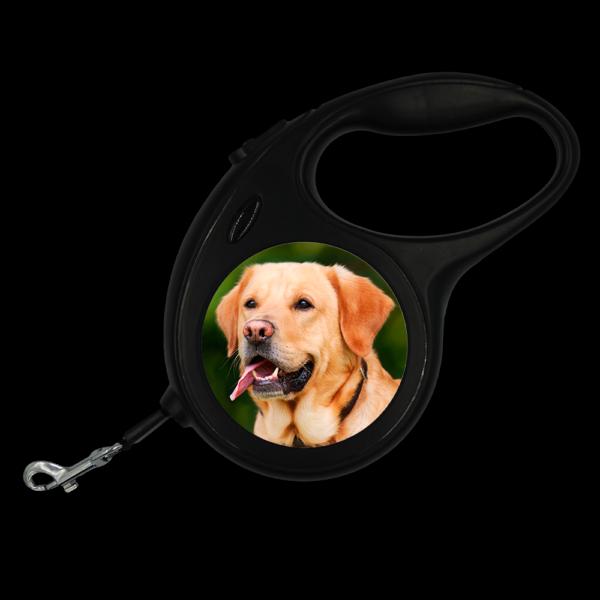 Guinzaglio personalizzato per cane, lunghezza 8 metri