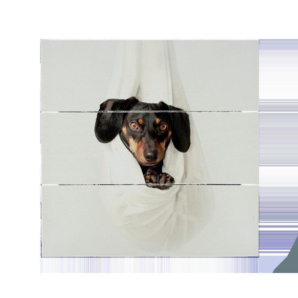 pannello in legno con foto bianco